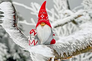 Weihnachten amanosa